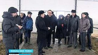 Губернатор Алексей Гордеев оценил первые результаты довольно смелой идеи в Хохольском районе