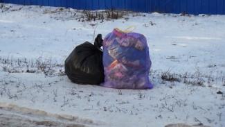 Жители 7 районов Воронежской области переплатили за вывоз мусора