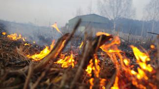 В 9 районах Воронежской области уровень пожароопасности вырос до максимального