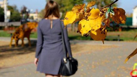 Бабье лето попрощалось с Воронежем температурным рекордом