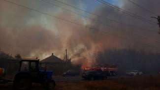 В воронежском райцентре загорелись 5 га камыша рядом с жильём