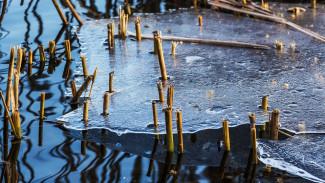 В Воронеже спасатели сняли со льдины в водохранилище пьяного рыбака