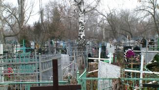 В Воронежской области пьяный мужчина разгромил могилы родителей из-за старых обид