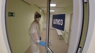 В Воронежской области коронавирус унёс ещё 8 жизней
