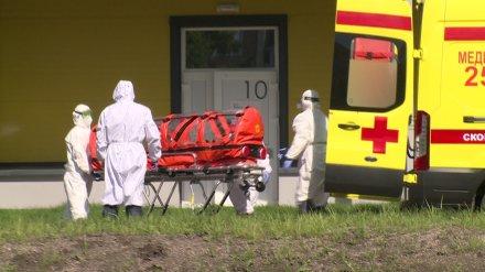 За неделю от коронавируса умерли 20 воронежцев