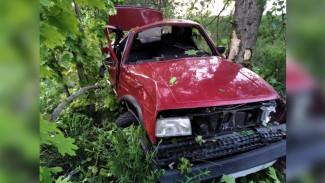 В Воронежской области иномарка врезалась в деревья: пострадали трое детей