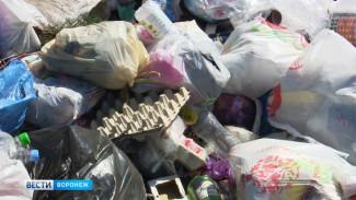 В частном секторе Воронежа на месте исчезнувшей мусорки появилась огромная свалка