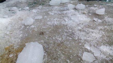 В Воронежской области два человека пострадали от упавших с крыш глыб льда
