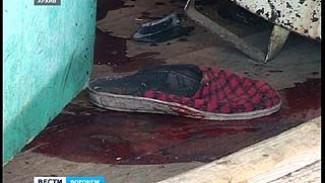Утверждено обвинительное заключение по делу об убийствах пенсионеров в Тумановке
