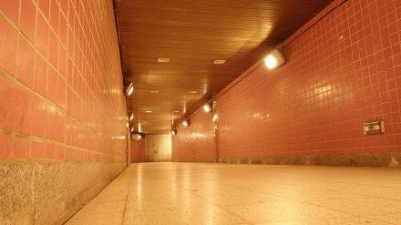Мэрия Воронежа определилась со сроками передачи в концессию 4 подземных переходов