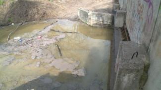 Воронежцы сообщили о загрязняющих Дон фекальных ручьях
