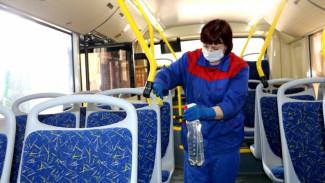 Все воронежские маршрутки из-за угрозы коронавируса ждут дезинфекции