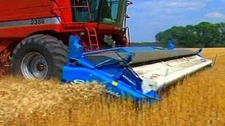 В хозяйствах области в 2008 году собрано пять миллионов тонн зерна
