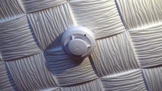 В воронежском райцентре в дома неблагополучных семей установят дымовые датчики