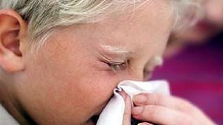 В Воронеже и области грипп свои позиции не сдает