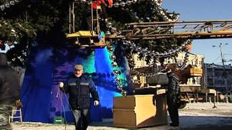 Главная воронежская ёлка отправится на склад к её правообладателю