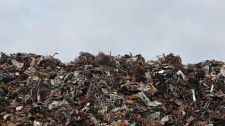Для воронежцев на треть понизят стоимость вывоза мусора