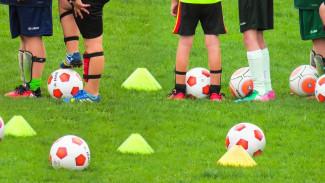 Юным футболистам разрешат тренироваться на обновлённых к ЧМ воронежских стадионах