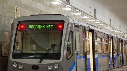 Строительство двух линий метро в Воронеже оценили в миллиард евро
