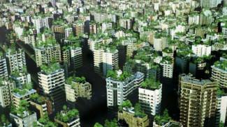 Бизнесмены помогут обустроить в Воронеже зелёные зоны
