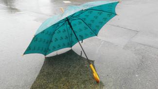 В Воронежской области рабочая неделя начнётся с мокрого снега и дождя