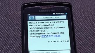 Воронежский Центробанк назвал 6 фраз, помогающих вычислить мошенников
