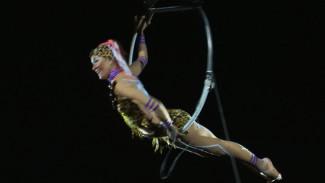 На представлении в Воронежском цирке пообещали зарядить адреналином