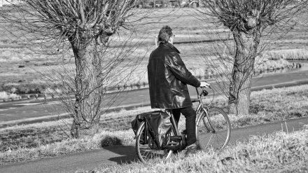 Фура насмерть раздавила 50-летнего велосипедиста в воронежском селе