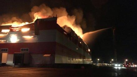 После пожара в «Магните» село под Воронежем накрыло едким дымом и вонью