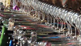 Продавец одежды из Воронежской области нанесла ущерб мировому спортивному бренду