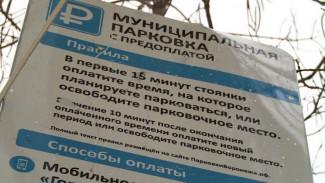 Воронежские платные парковки перестанут быть муниципальными к 1 апреля
