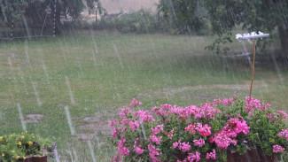 Июнь попрощается с жителями Воронежской области грозами и ливнями