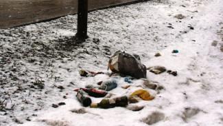 Мэр Воронежа пообещал лично проверить уборку «весеннего» мусора в городе