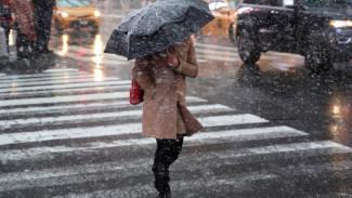 В начале рабочей недели жителей Воронежской области снова ждёт непогода