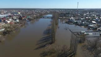Воронежский губернатор потребовал не допустить строительства домов в зонах паводка