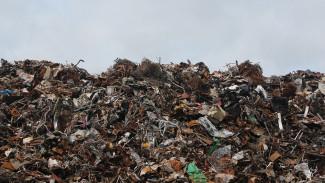 В Воронежской области может снизиться плата за вывоз мусора