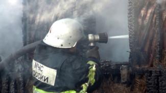 При пожаре в воронежском селе погиб 49-летний мужчина