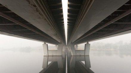 Разработчики нового генплана предложили добавить Воронежу два моста и транспортные кольца