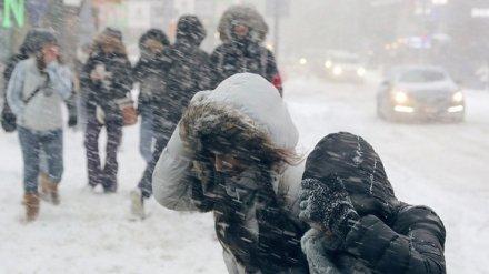 МЧС предупредило жителей Воронежской области о сильном ветре и снежных заносах