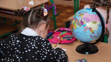 Воронежские власти задумались о переносе школьных каникул