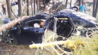 Водитель иномарки разбился в ДТП в Воронеже