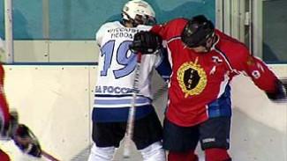 Состоялся хоккейный матч между командами Липецкого и Воронежского ГУВД
