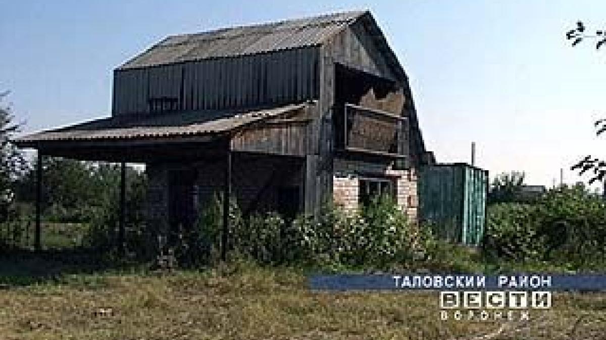 Фото таловский район поселок терехово