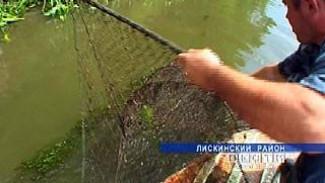 Воронежские реки и озера атакуют браконьеры