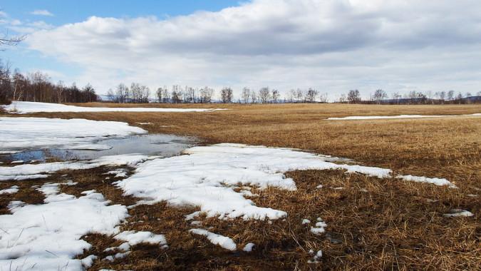 В Воронежской области спрогнозировали самый тёплый день февраля за последние 102 года