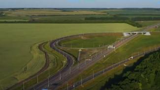 «Автодор» показал новую дорогу в обход Лосево и Павловска в Воронежской области