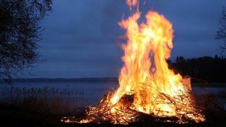 Ребёнок из Воронежской области обгорел из-за неудачной попытки потушить костёр бензином