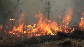 В Воронежской области при сжигании мусора погиб мужчина