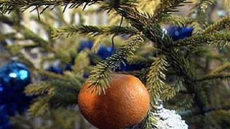 Рождественская елка отличается от новогодней