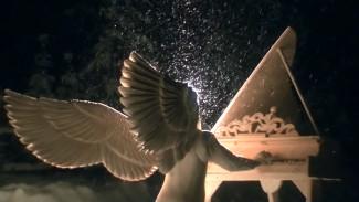 «Чтобы коснуться неба». Воронежец рассказал о создании огромной «Обители ангелов» в Карелии